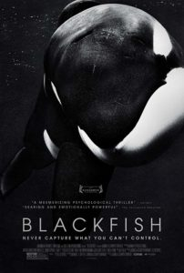 Blackfish cover