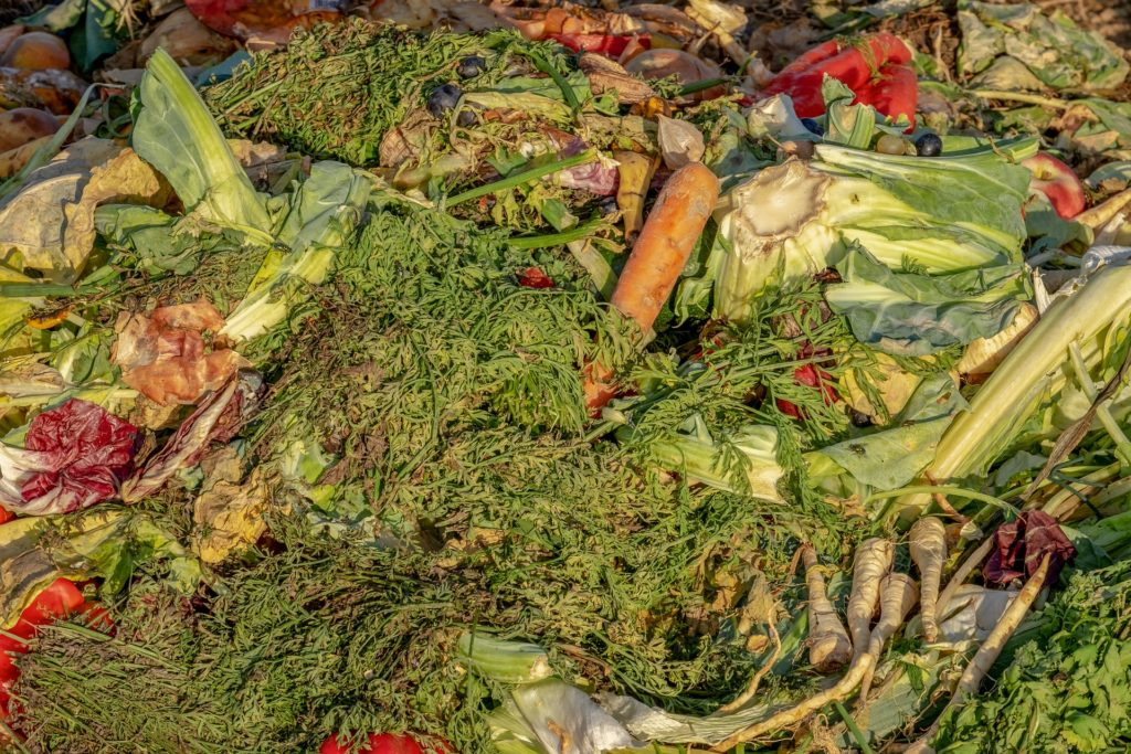 fruit and vegetable compost